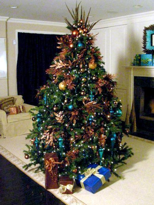 Trông cây thông rất ấn tượng