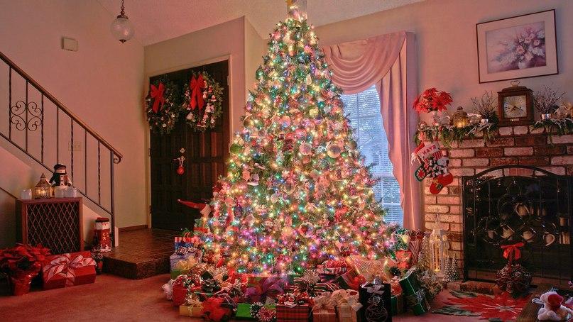 Mẹo trang hoàng cây thông Giáng Sinh cho gia đình