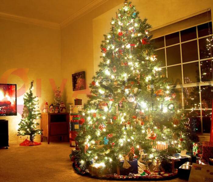 6 lưu ý trang trí cây thông noel giúp bạn có một cây thông đẹp nhất để chào đón giáng sinh