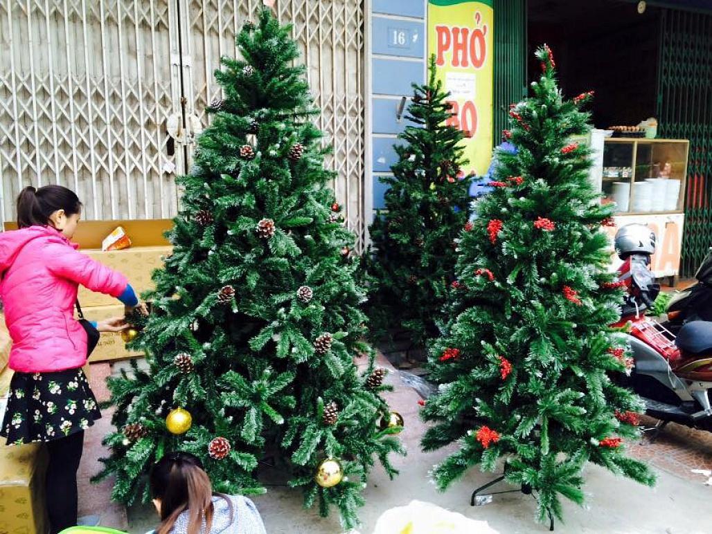 Chọn cây thông Noel 3m nhân tạo có hại môi trường không?