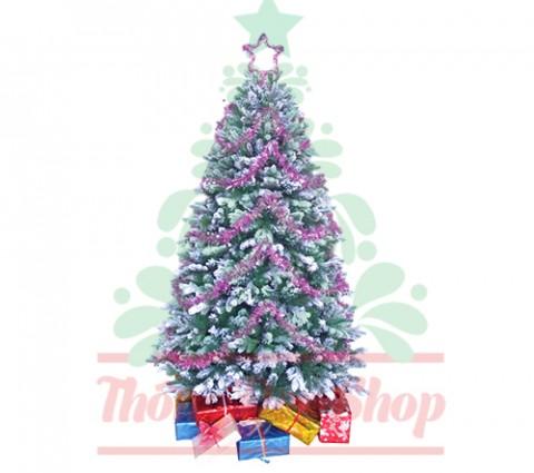 Cây thông Nô en phủ tuyết mang Giáng sinh đến với mọi nhà