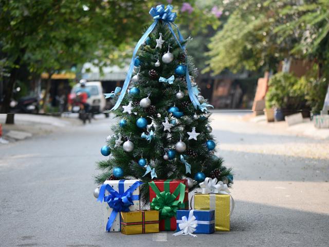 Tại sao cây thông Noel màu xanh được sử dụng nhiều nhất?