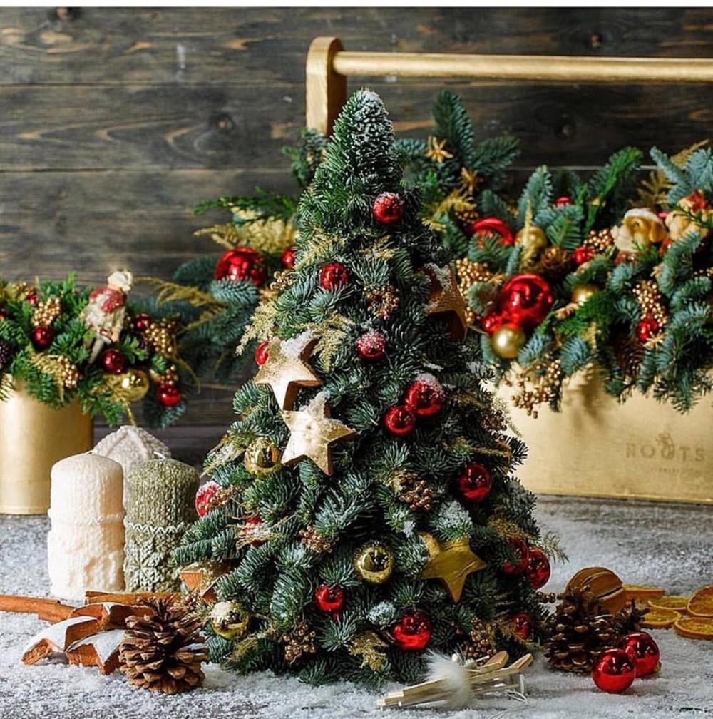 Cây thông Noel nhỏ thay thế cho lời chúc an lành
