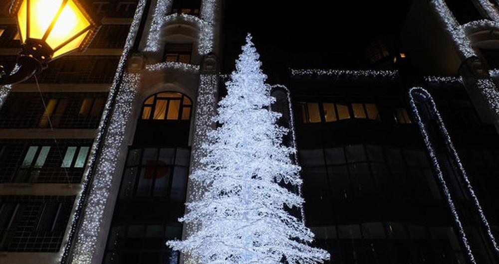 Gợi ý cách trang trí cây thông phủ tuyết cho nhà riêng