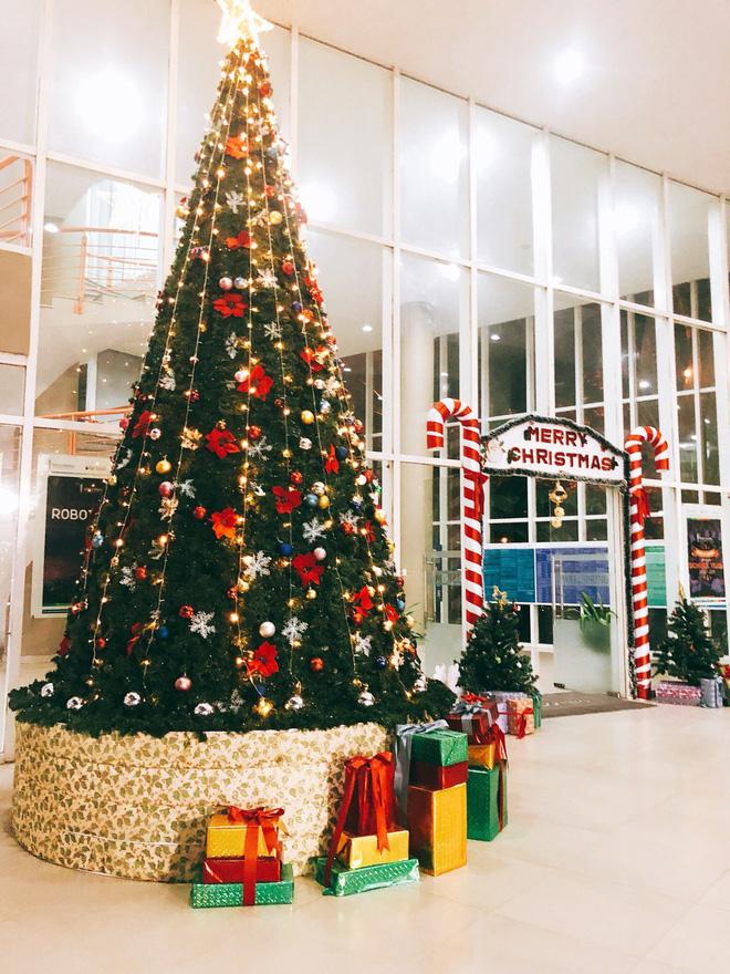 Chọn dịch vụ cho thuê cây thông Noel và trang trí Giáng Sinh tại Thông Đẹp
