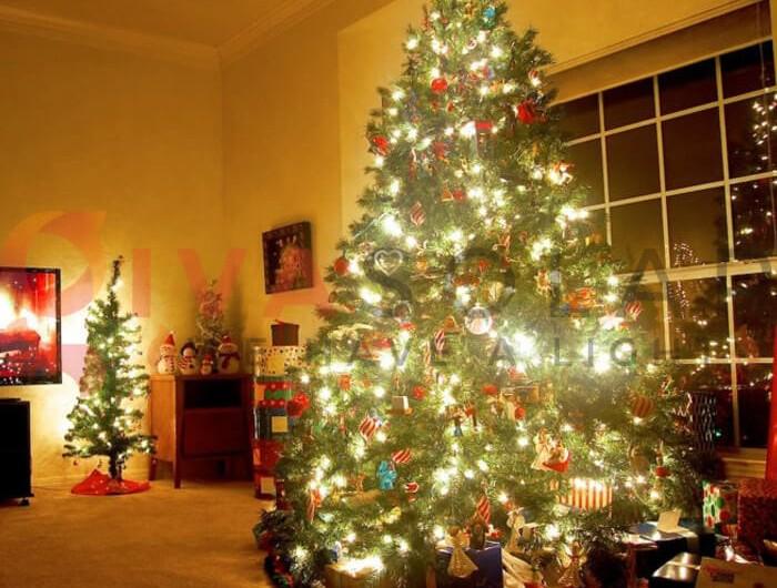 Mách bạn cách treo đèn cây thông Noel phong cách nghệ thuật
