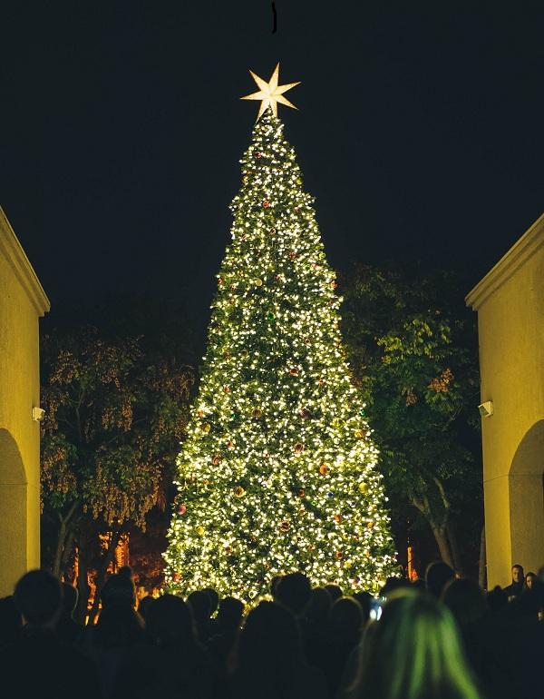 Những cây thông Noel đẹp nhất cho khách sạn